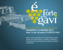 logo Golden Gavi 2012