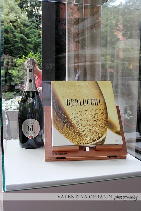 monografia Berlucchi
