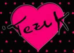 logo Tezuk