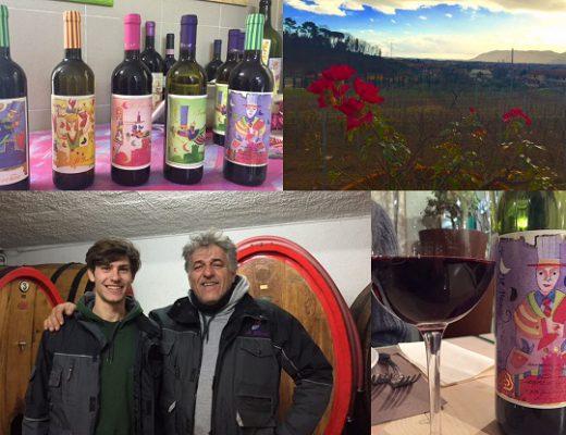 azienda vitivinicola Il Torchio