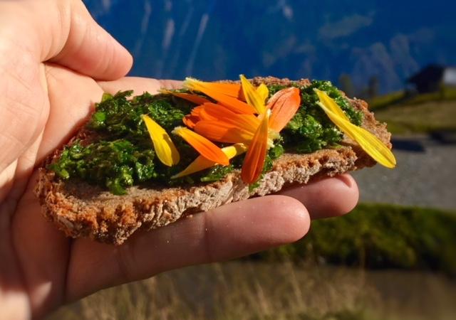 tartare di erbe commestibili